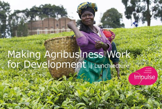 Making Agribusiness Work for Development