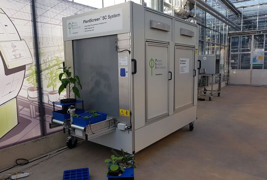 New automated plant phenotyping device at WUR